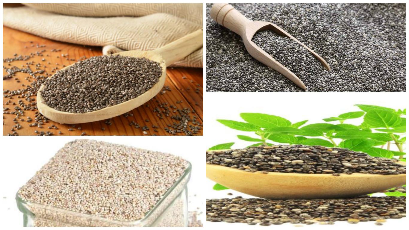 Dónde comprar semillas de chía