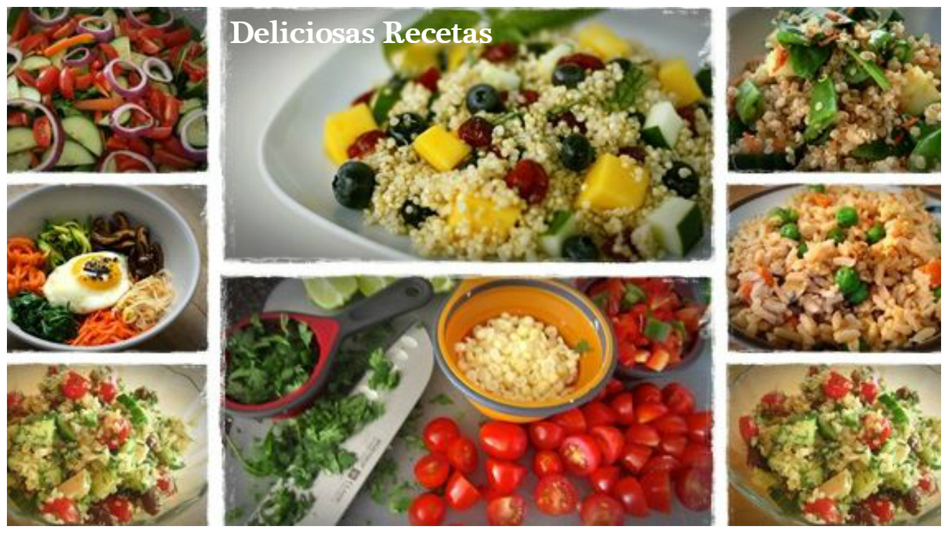 Platos y comidas deliciosos