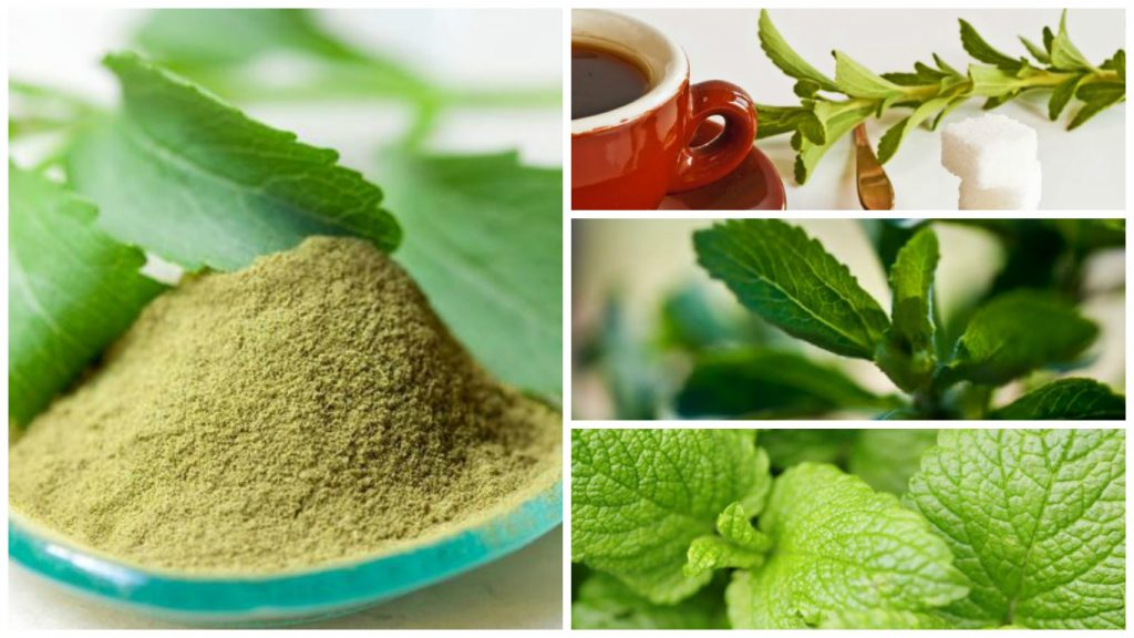Green coffee bean extract is it safe
