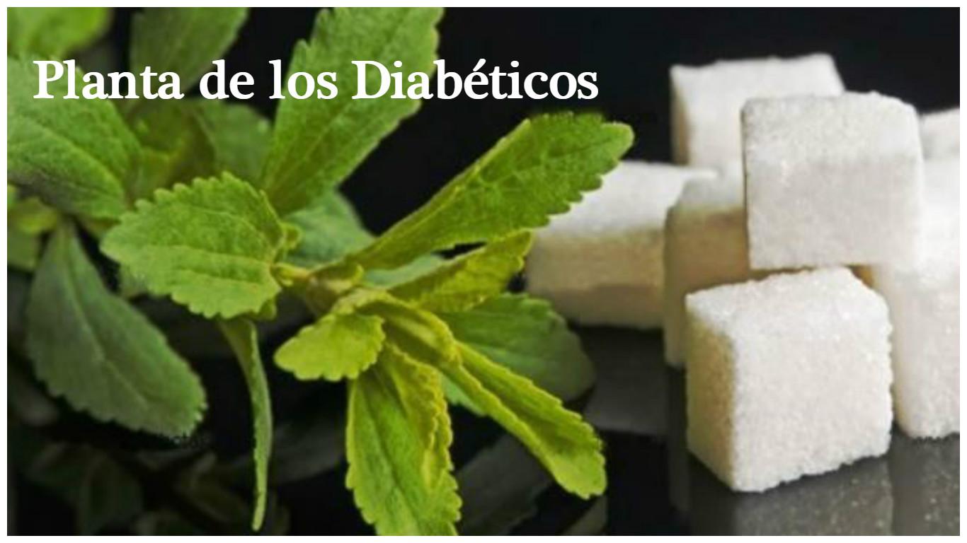 Beneficios para los diabéticos