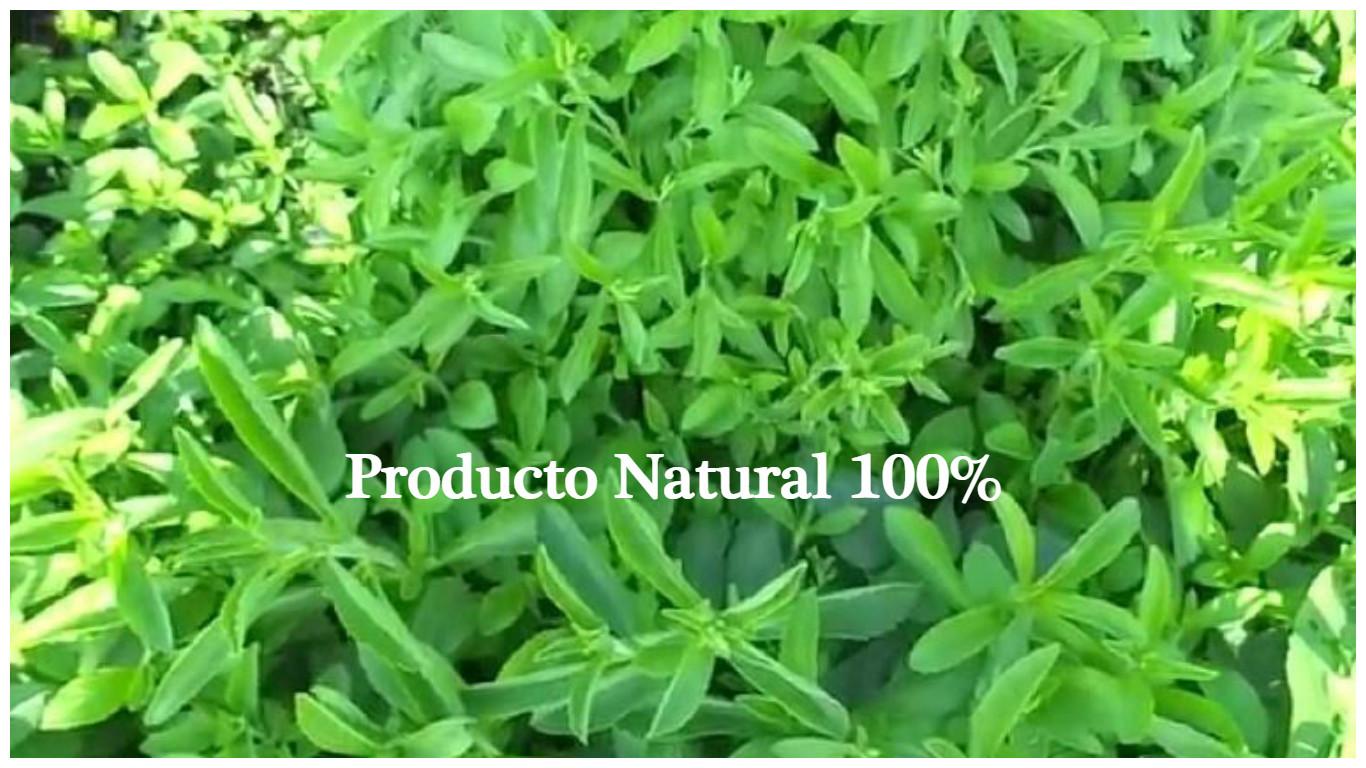 Edulcorante natural 100%