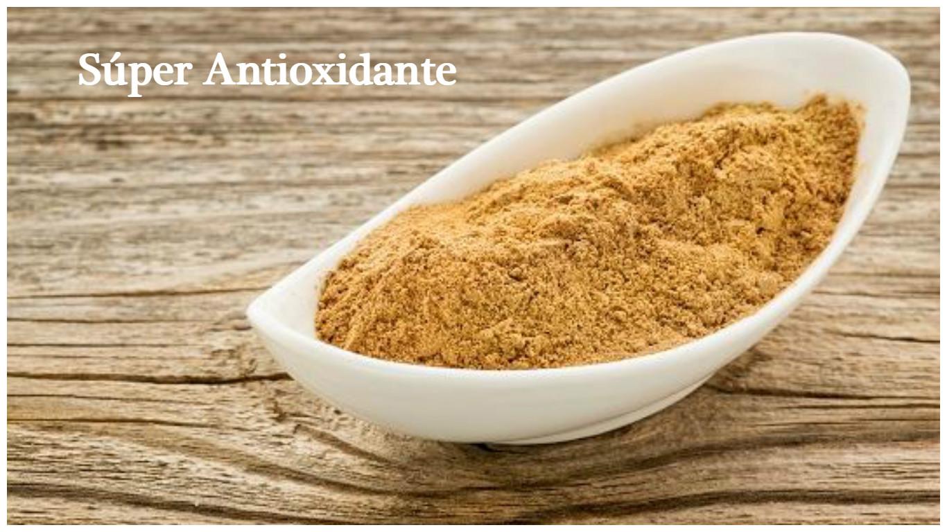Antioxidante con gran poder