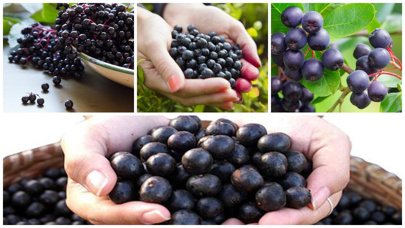 Funciona el acai berry para adelgazar