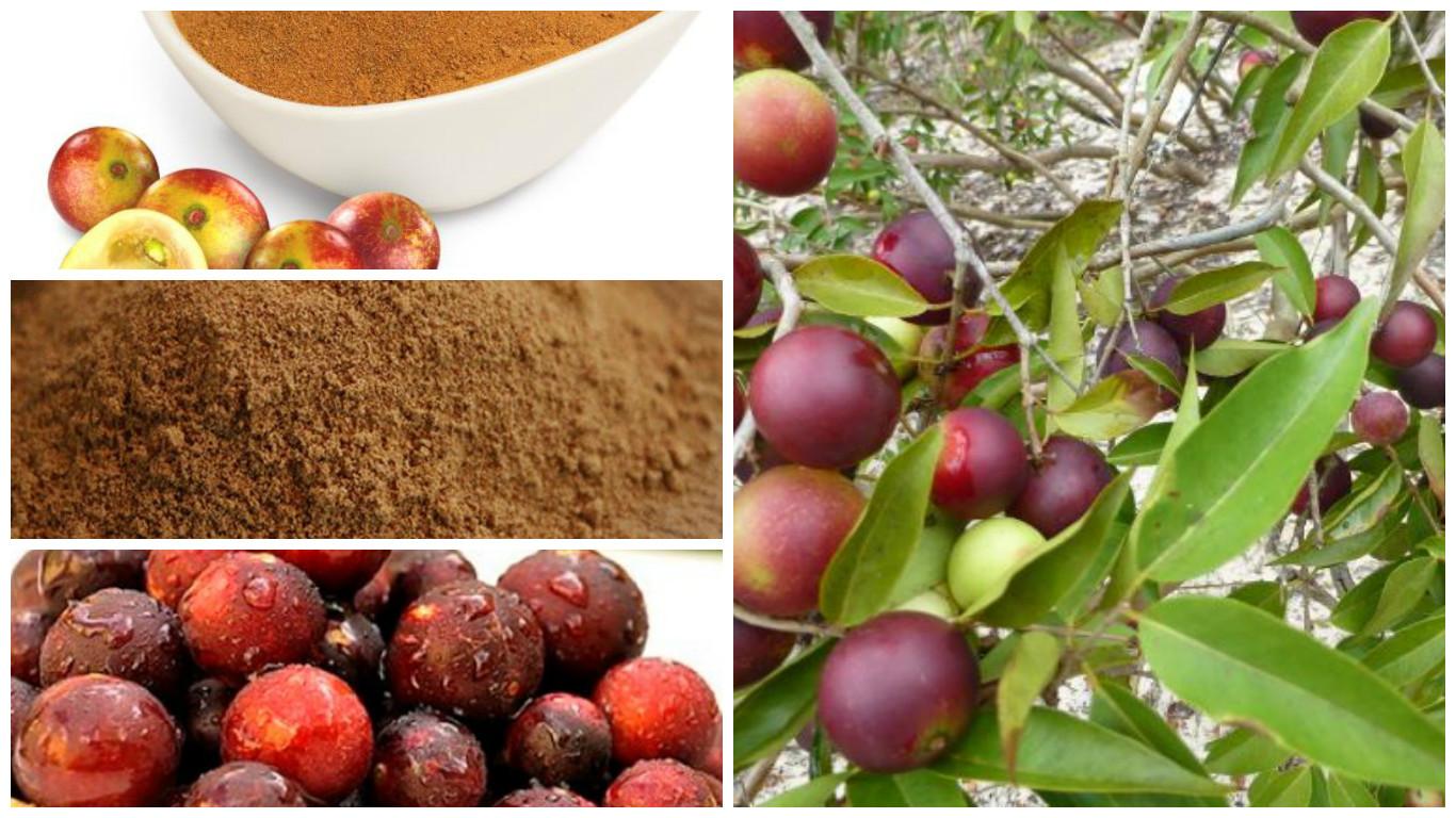 Fruta con gran concentración en vitamina C