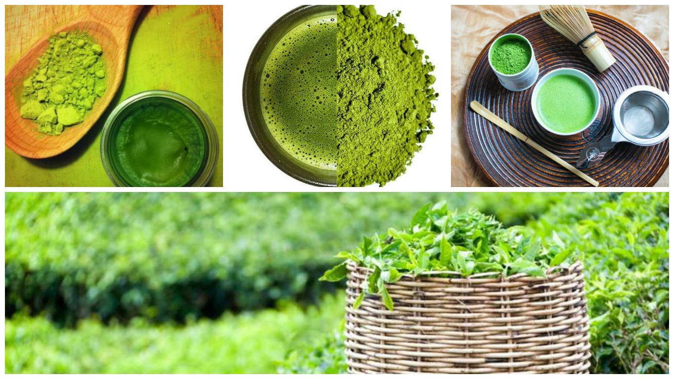 Conseguir y consumir té verde