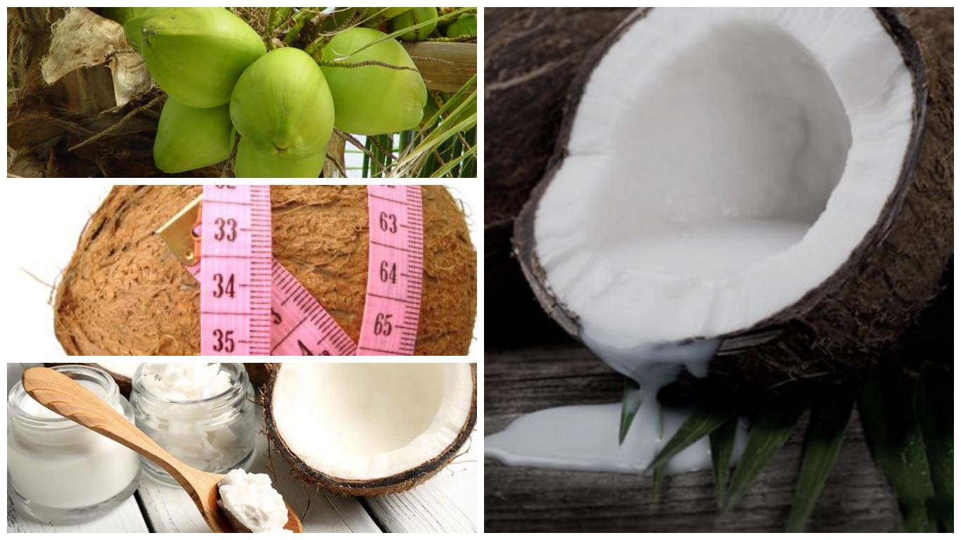 Aceite de coco ecológico y su impacto para perder peso